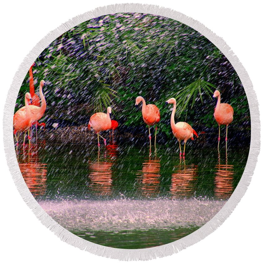 Flamingos Round Beach Towel featuring the photograph Flamingos II by Susanne Van Hulst