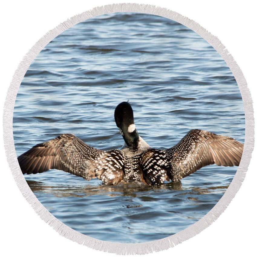 Seney National Wildlife Refuge Round Beach Towel featuring the photograph Flapping Wings by Linda Kerkau