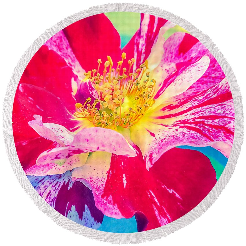 Fleurie Peppermint Rose High Key Round Beach Towel featuring the photograph Fleurie Peppermint Rose High Key by Anna Porter