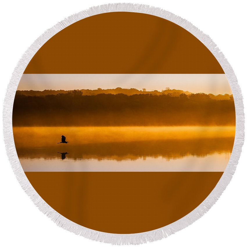 Natural Forms Round Beach Towel featuring the photograph Flight At Dawn by Rikk Flohr