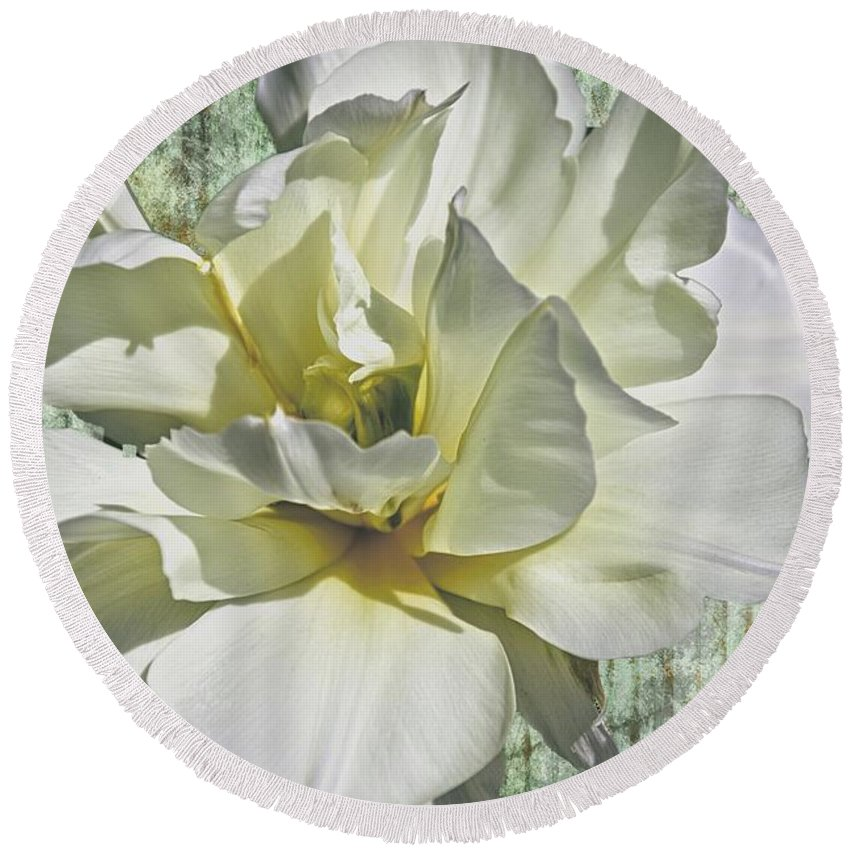 Flower Round Beach Towel featuring the photograph Flirty Beauty by Alice Gipson