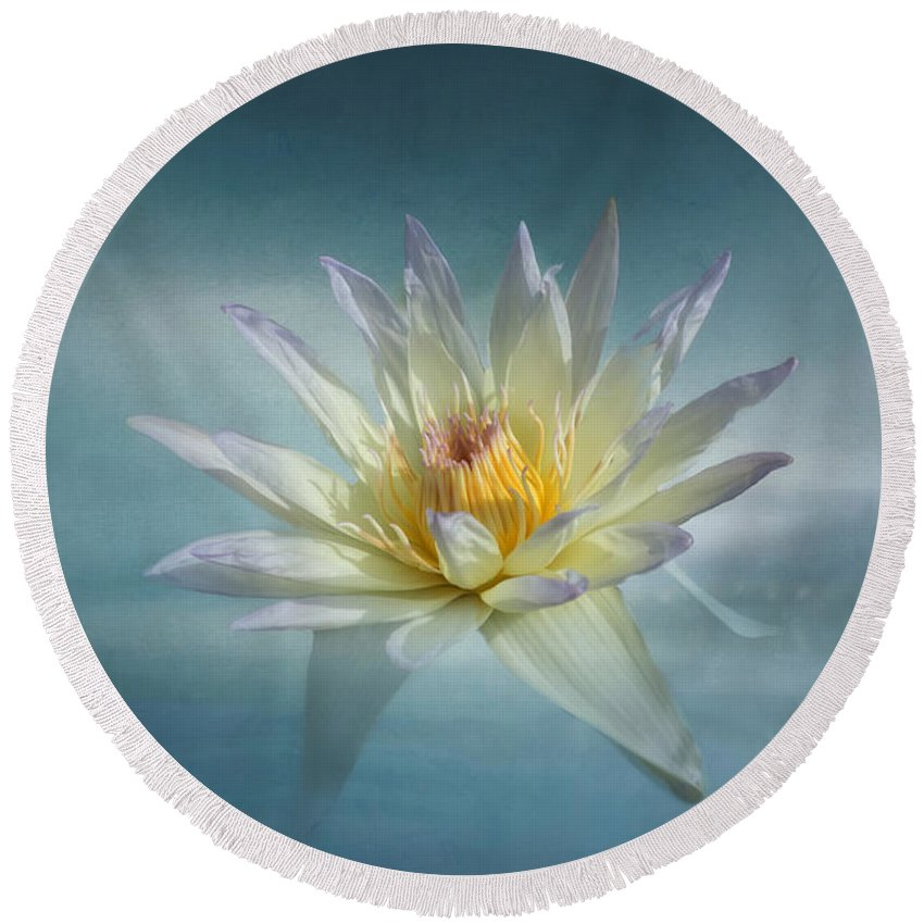 White Flower Round Beach Towel featuring the photograph Floating Water Lily by Kim Hojnacki