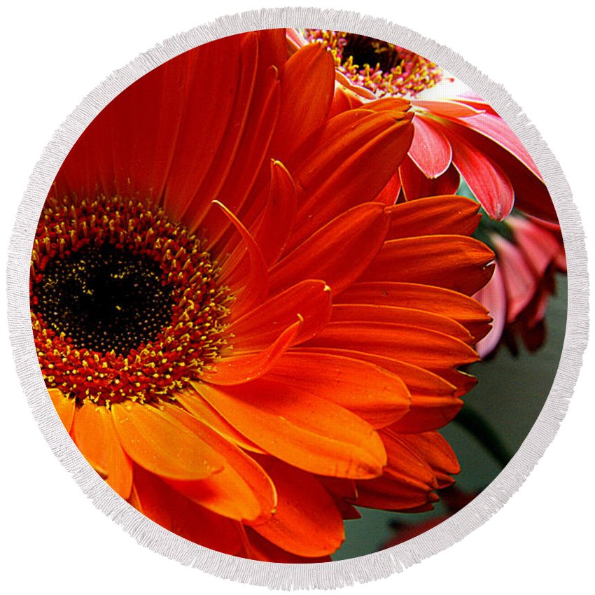 Clay Round Beach Towel featuring the photograph Floral Art by Clayton Bruster