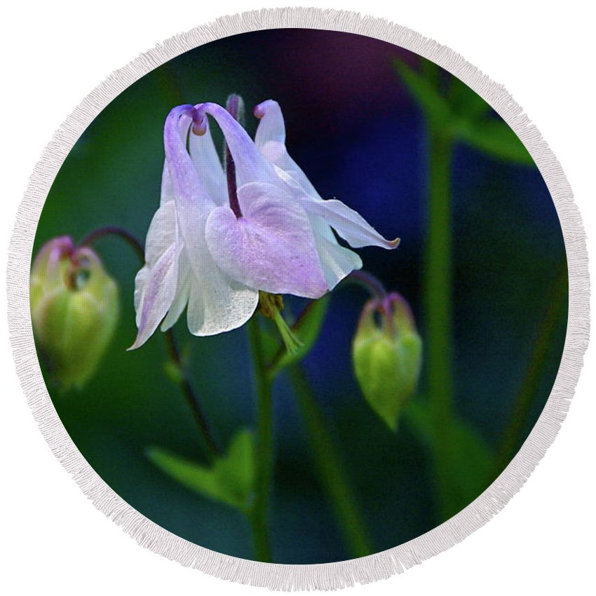 Columbine Round Beach Towel featuring the photograph Floral Birds by Byron Varvarigos