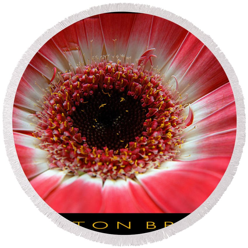 Clay Round Beach Towel featuring the photograph Floral by Clayton Bruster