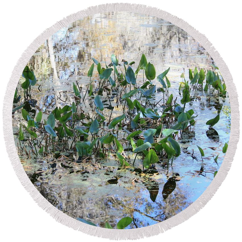 Florida Pond Round Beach Towel featuring the photograph Florida Pond by Carol Groenen