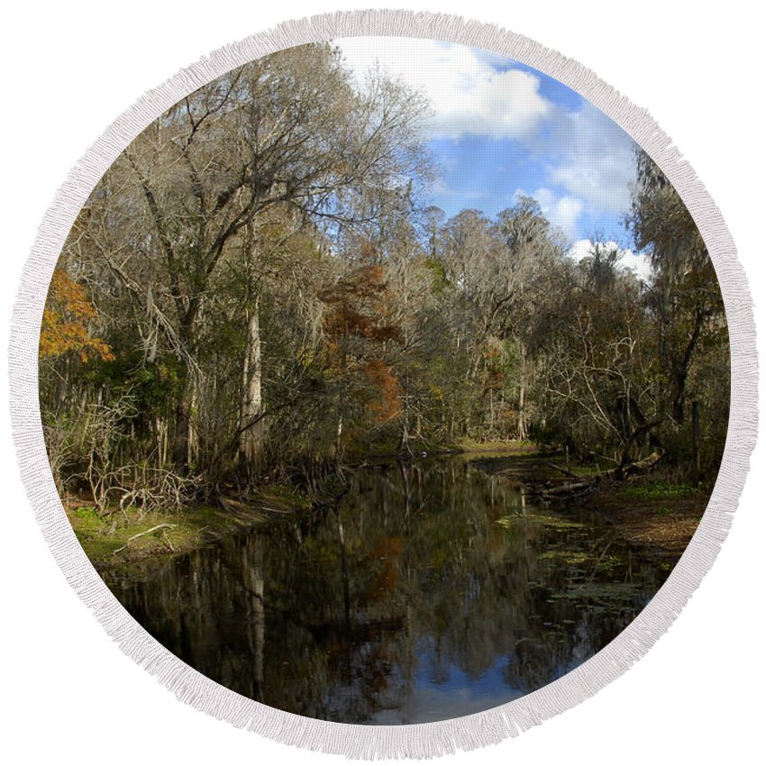 Wetlands Round Beach Towel featuring the photograph Florida Wetlands by David Lee Thompson