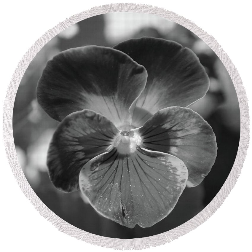 Flower Round Beach Towel featuring the photograph Flower 5 - Black And White by Lee Hart
