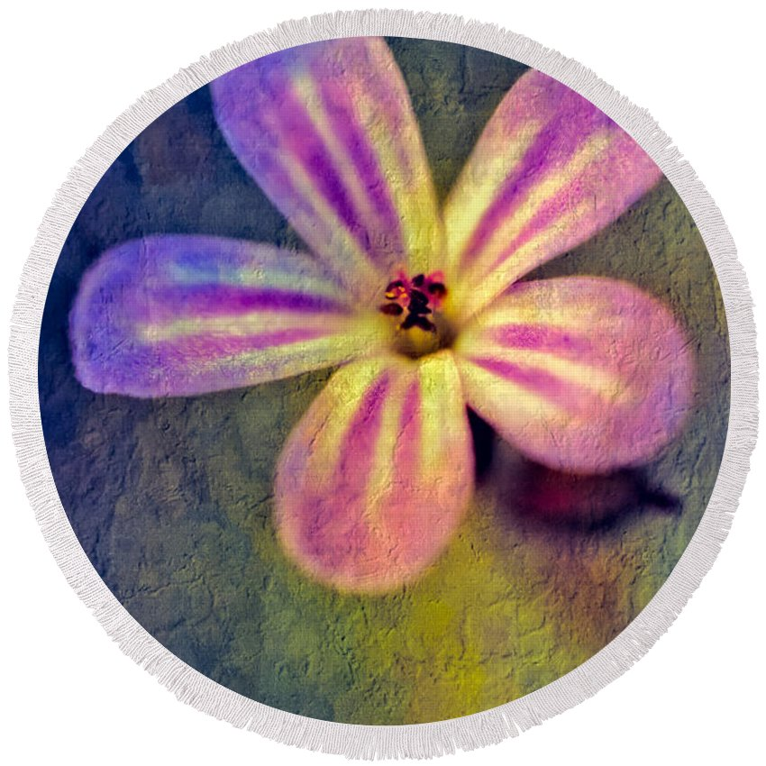 Blossom Round Beach Towel featuring the photograph Flower by Adrian Evans