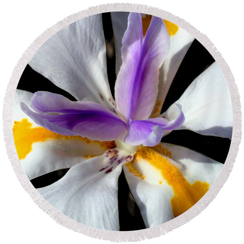 Flowers Round Beach Towel featuring the photograph Flower by Anthony Jones