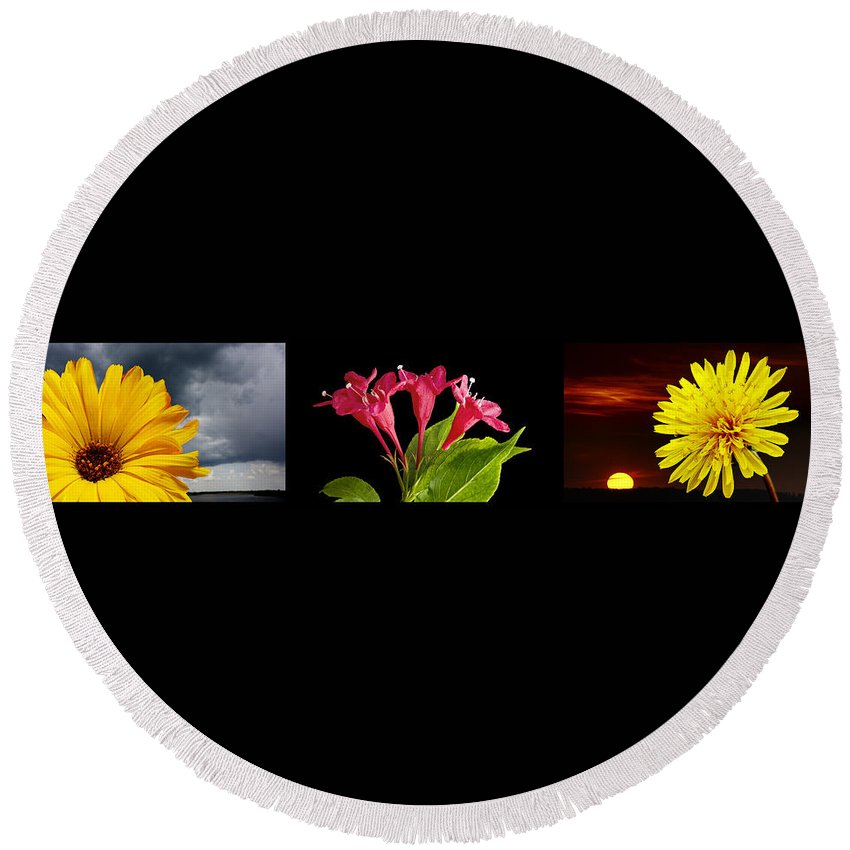 Montage Round Beach Towel featuring the photograph Flower Composite Trio Horizontal by Donald Erickson