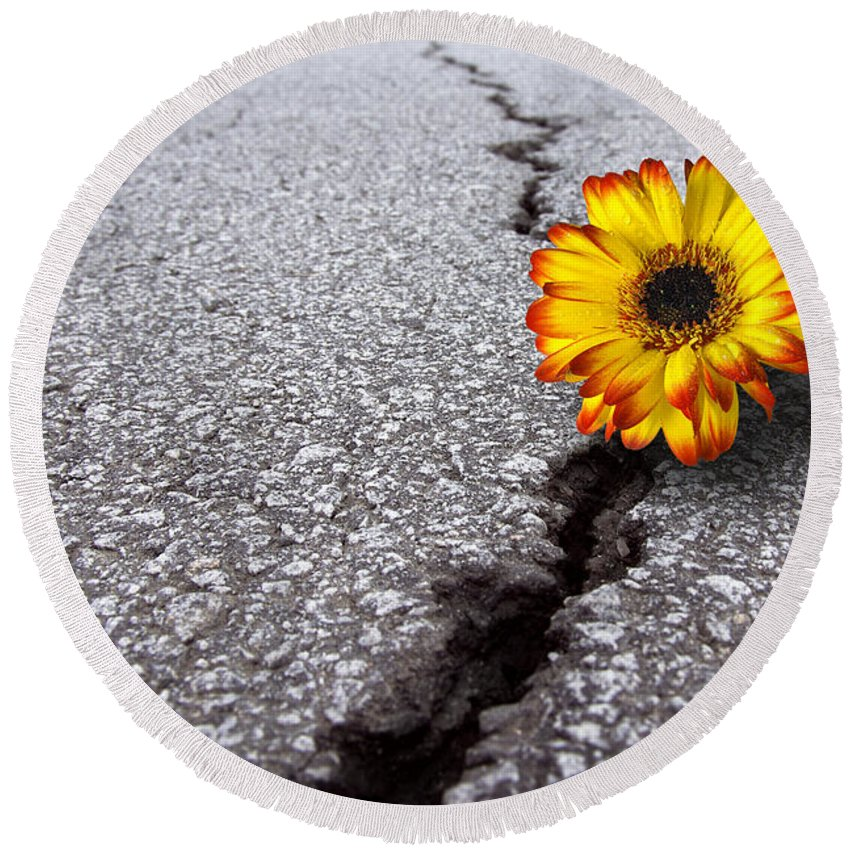 Abstract Round Beach Towel featuring the photograph Flower In Asphalt by Carlos Caetano