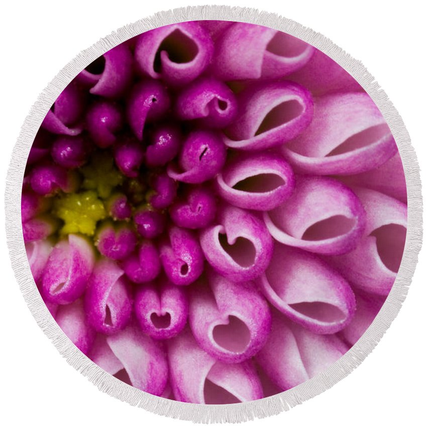 Flower Purple Round Beach Towel featuring the photograph Flower No. 4 by Andrew Giovinazzo
