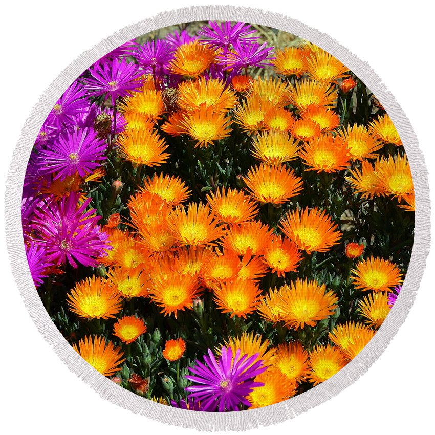 Flowers Round Beach Towel featuring the photograph Flower Power by Carla Parris