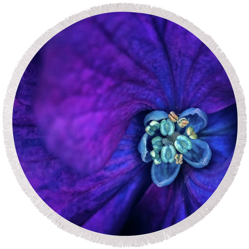 Flower Round Beach Towel featuring the photograph Flower5 by Lijie Zhou