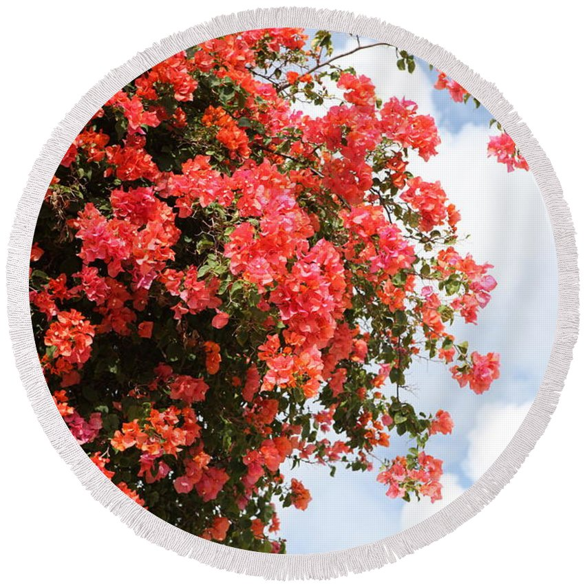 Hawaii Round Beach Towel featuring the photograph Flowering Tree by Nadine Rippelmeyer
