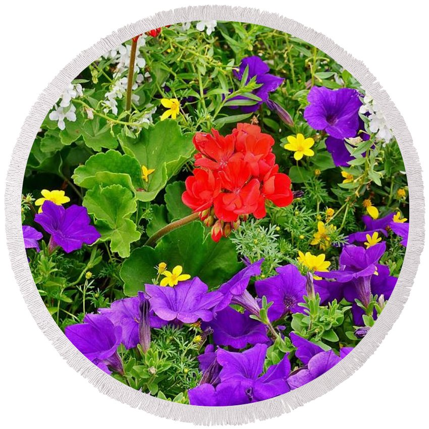 Round Beach Towel featuring the photograph Flowers Of Bethany Beach - Petunias by Kim Bemis