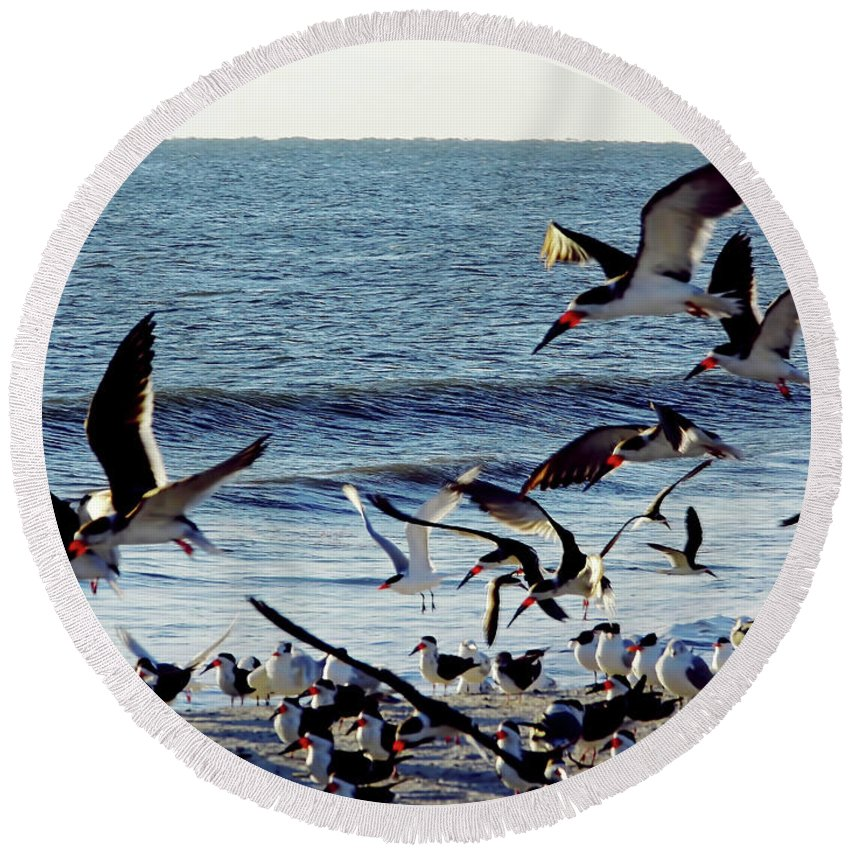 Beach Round Beach Towel featuring the photograph Fly Away by D Hackett