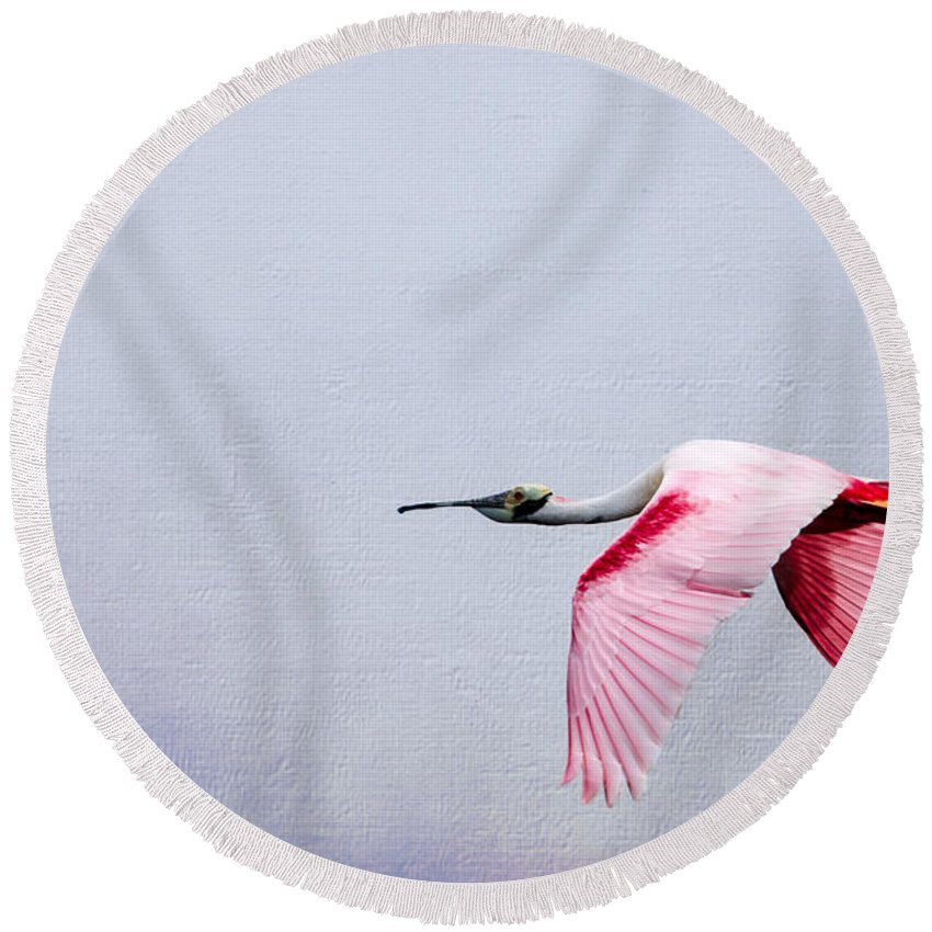 Spoonbill Round Beach Towel featuring the photograph Flying Pretty - Roseate Spoonbill by Debra Martz