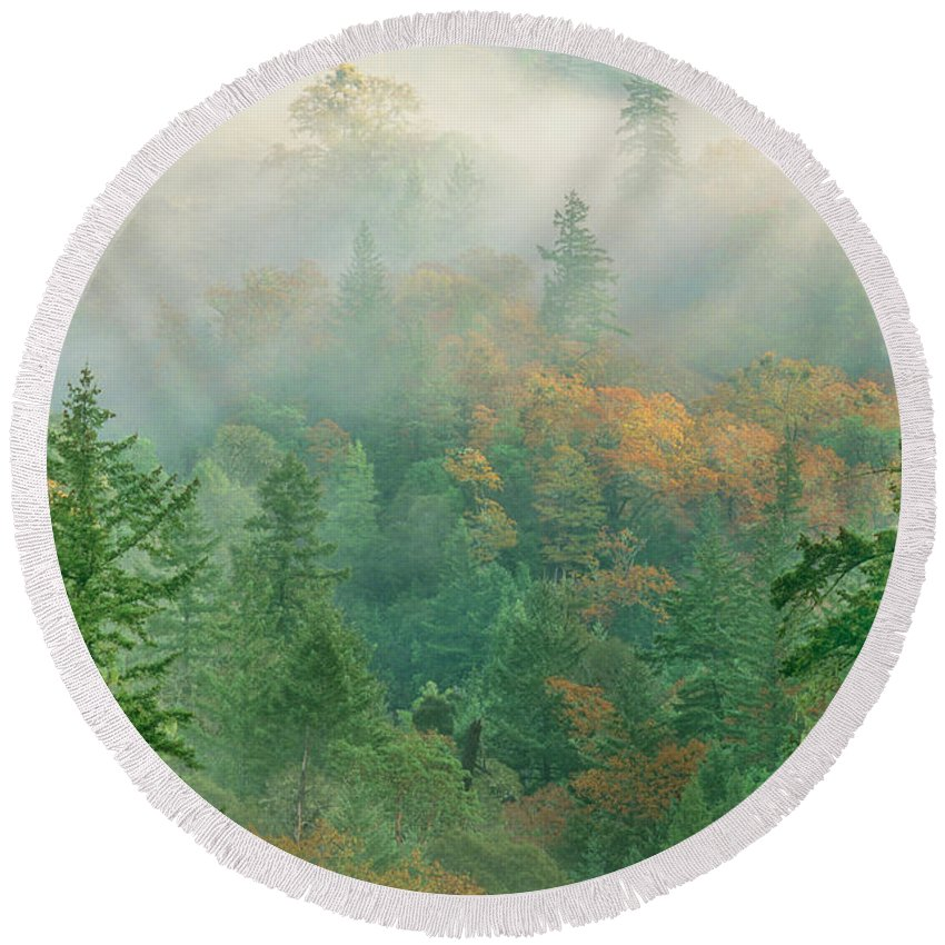 Dave Welling Round Beach Towel featuring the photograph Foggy Morning In Humbolt County California by Dave Welling