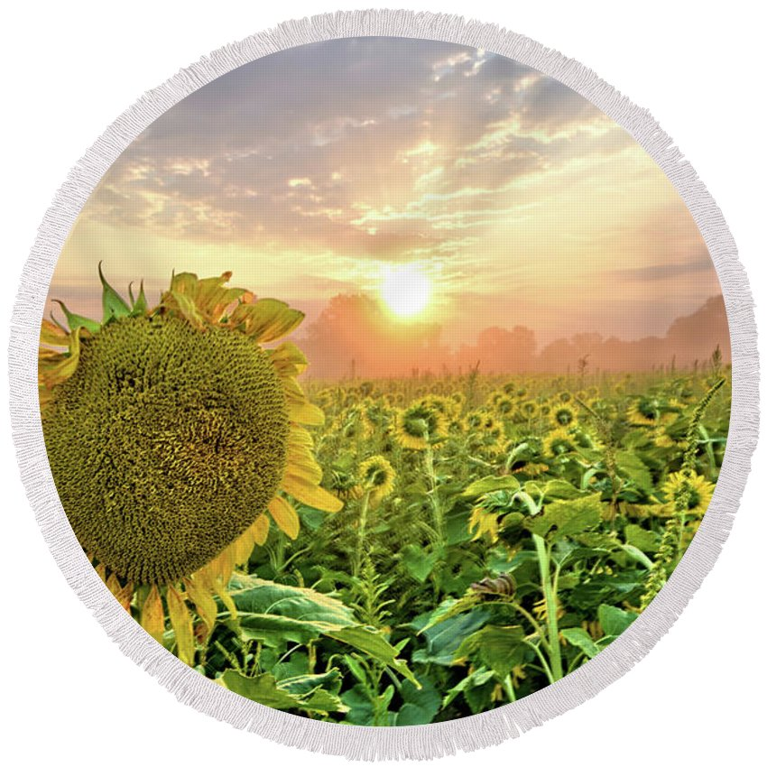 Flower Round Beach Towel featuring the photograph Foggy Yellow Fields 3 by Bonfire Photography