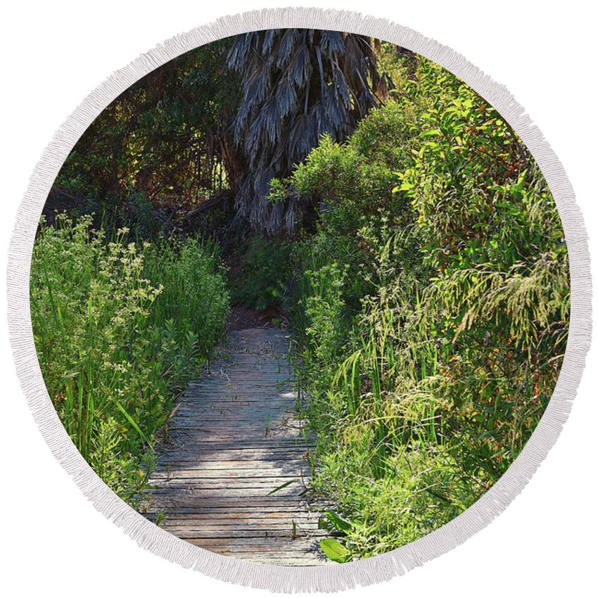 Linda Brody Round Beach Towel featuring the photograph Footpath In Peters Canyon I by Linda Brody
