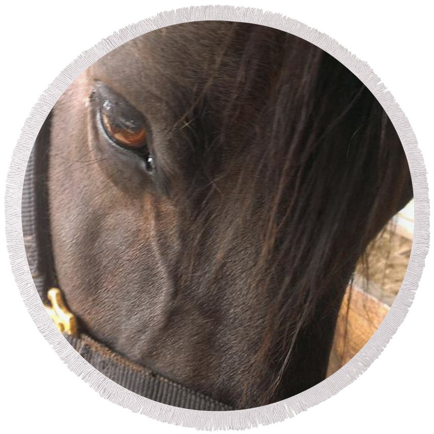 Horse Round Beach Towel featuring the photograph For The Love Of Grain by LKB Art and Photography