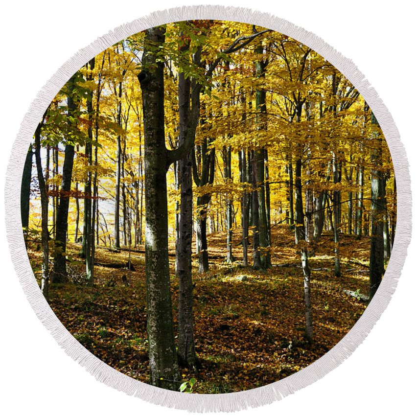 Trees Round Beach Towel featuring the photograph Forest Floor One by Tim Nyberg