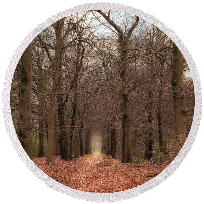 Netherlands Round Beach Towel featuring the photograph Forest Lane Near Maarsbergen by Tim Abeln