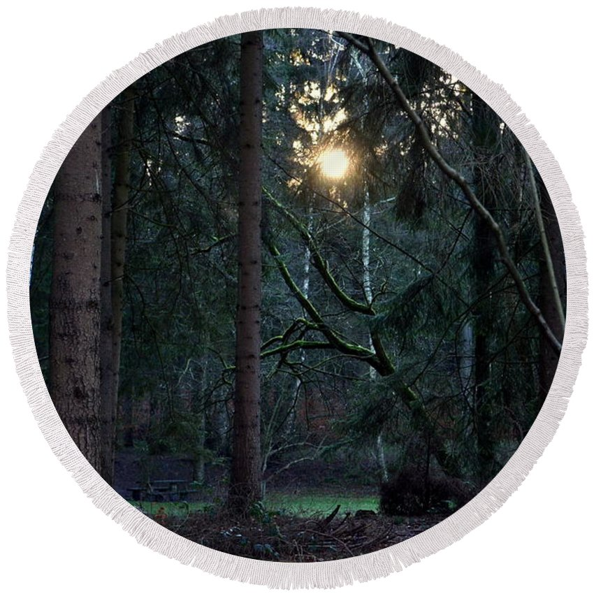 Forest Round Beach Towel featuring the photograph Forest Magic 7 by Angelika Heidemann