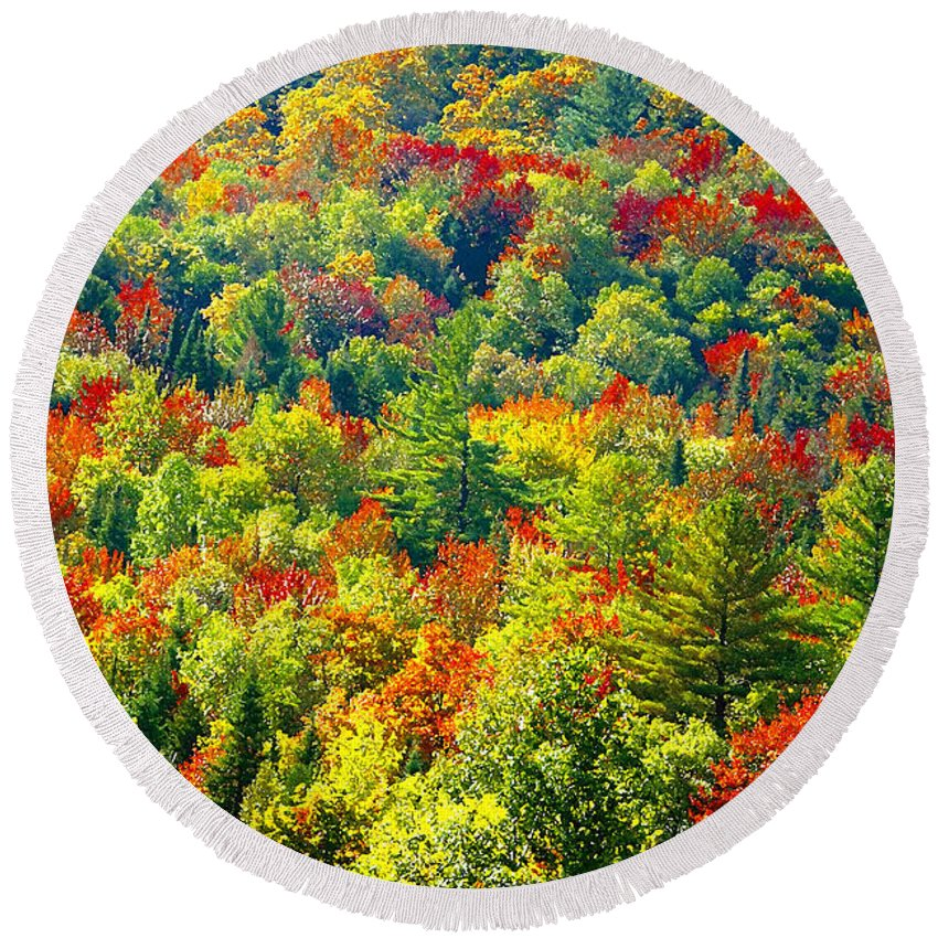 Forest Round Beach Towel featuring the photograph Forest Of Color by David Lee Thompson