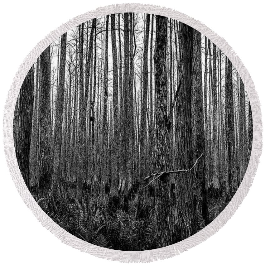 Florida Landscape Photography Round Beach Towel featuring the photograph Forest Thru The Trees by William Haas