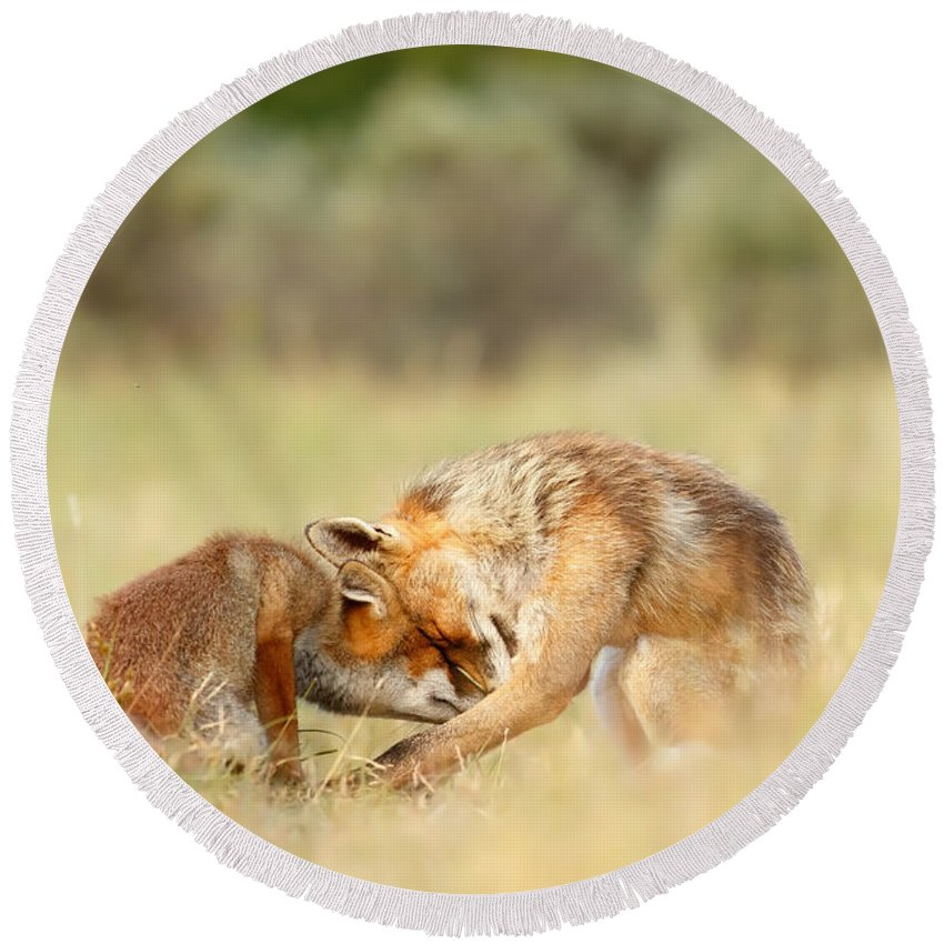 Fos Round Beach Towel featuring the photograph Foreverandeverandever - Red Fox Love by Roeselien Raimond