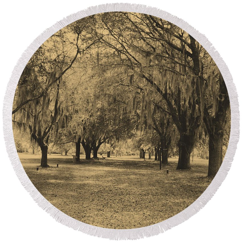 Fort Frederica Round Beach Towel featuring the photograph Fort Frederica Oaks by Katherine W Morse