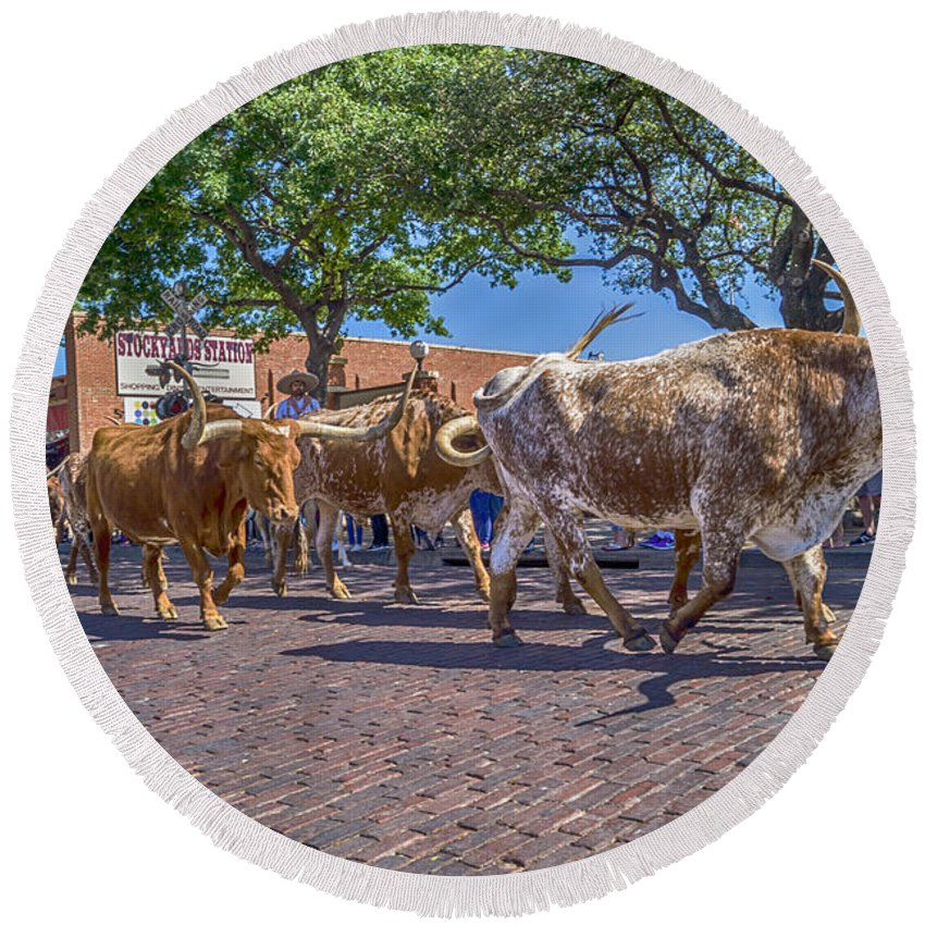 Fort Worth Round Beach Towel featuring the photograph Fort Worth Stockyards Longhorn Drive by Craig David Morrison