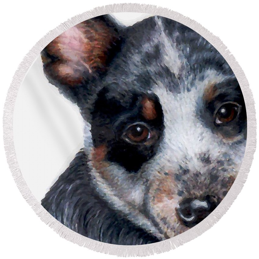 Australian Cattle Dog Round Beach Towel featuring the drawing Foster Detail by Kristen Wesch