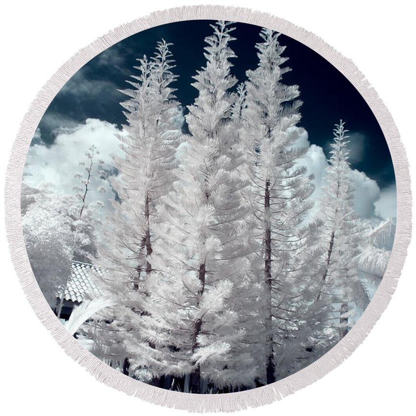 3scape Photos Round Beach Towel featuring the photograph Four Tropical Pines Infrared by Adam Romanowicz