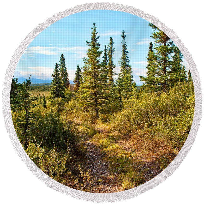 Round Beach Towel featuring the photograph Four Wheeler Trail - Richardson Highway by Cathy Mahnke