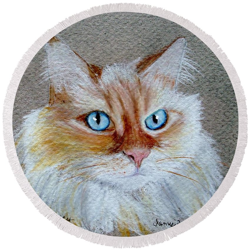 Cat Round Beach Towel featuring the drawing Foxey by Jamie Frier