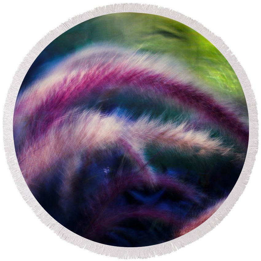 Plants Round Beach Towel featuring the photograph Foxtails In Shadows by Rikk Flohr