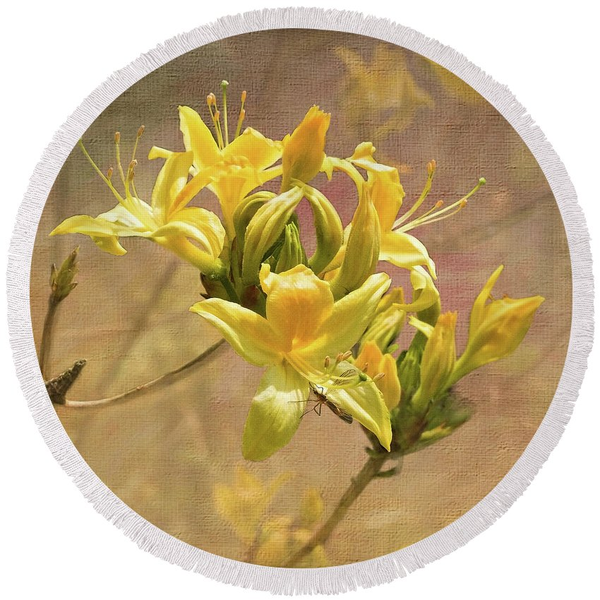 Designs Similar to Fragrant Azaleas