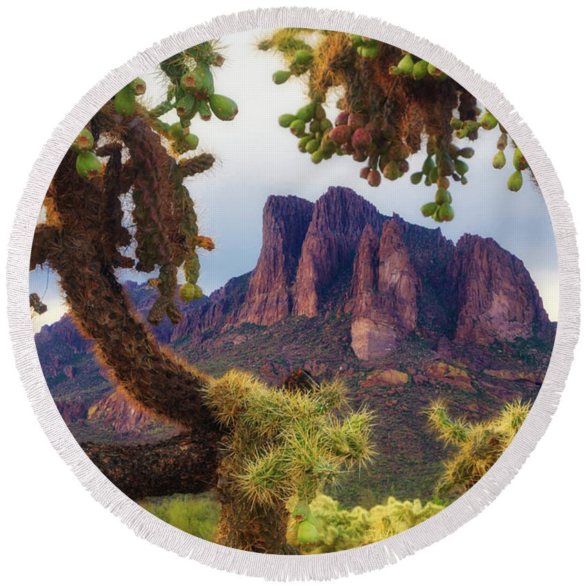 Arizona Round Beach Towel featuring the photograph Framed By Cholla by Rick Furmanek