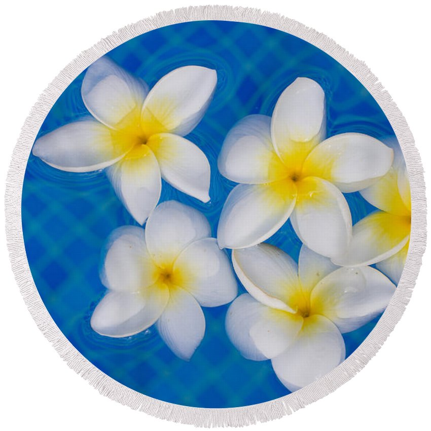 Frangipani Round Beach Towel featuring the photograph Frangipani Flowers In Water by Anastasy Yarmolovich