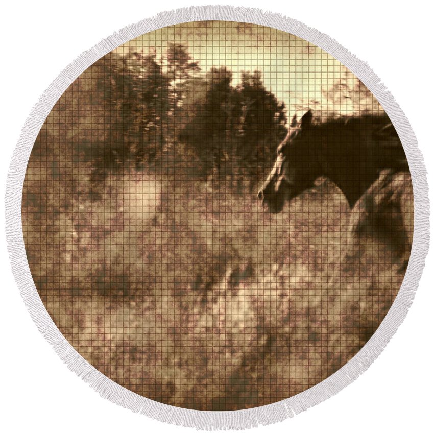 Horse Round Beach Towel featuring the photograph Freedom Run After Rescue by Shannon Story