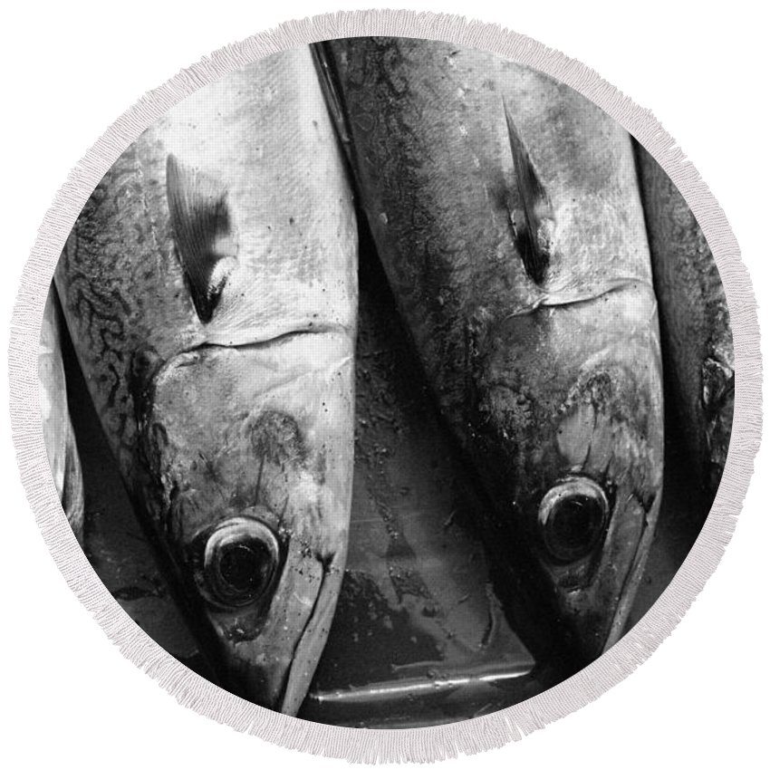Black And White Round Beach Towel featuring the photograph Fresh Catch by Gaspar Avila