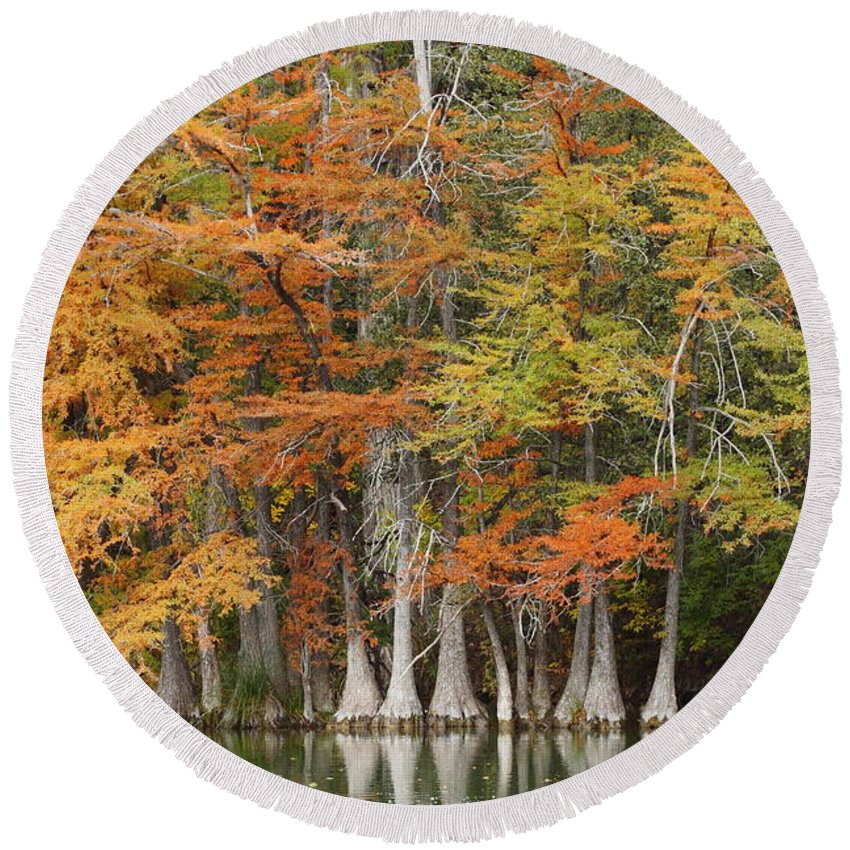 Fall Round Beach Towel featuring the photograph Frio River #5 2am-27571 by Andrew McInnes