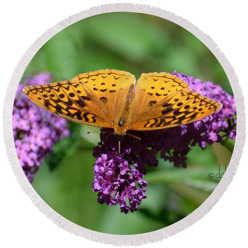 Gardening Round Beach Towel featuring the photograph Fritillary One by Debra Bender