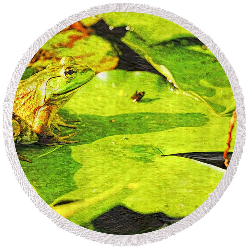 Frog Round Beach Towel featuring the photograph Frog On Lily Pad by Geraldine Scull
