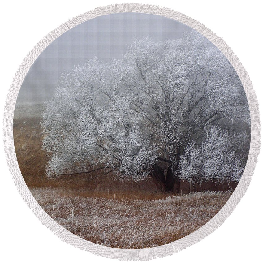 Cottonwood Round Beach Towel featuring the photograph Frost And Fog by Alana Thrower