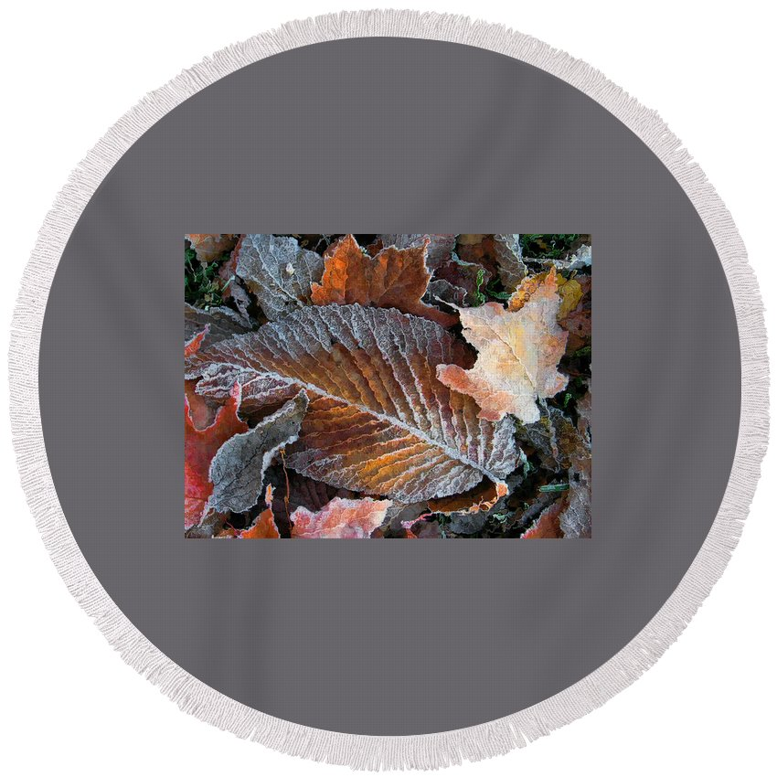 Leaves Fall Autumn Orange Red Brown Photograph Photography Photographer Round Beach Towel featuring the photograph Frosted Painted Leaves by Shari Jardina